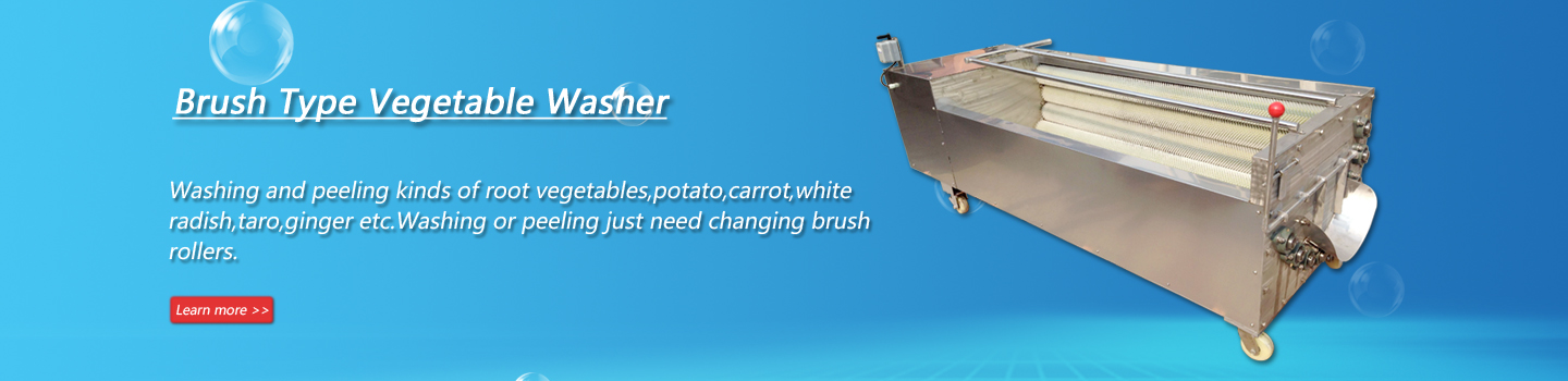 Brush Type Washer and Peeler for Fruit and Vegetable,Carrot Washing