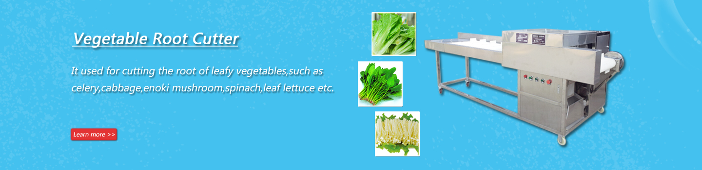 Automatic Vegetable Root Cutter|Celery Root Cutting Machine
