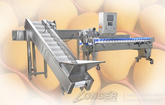 principle of weight sorting machine
