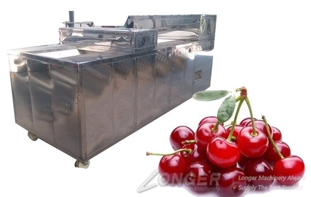 cherry seeds removal machine with high quality