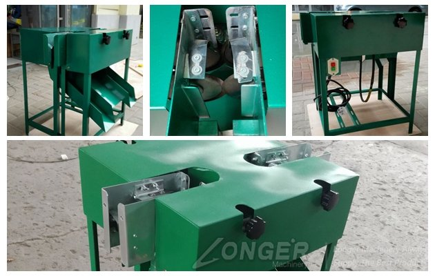 garlic root cutter machine packed 头 south korea