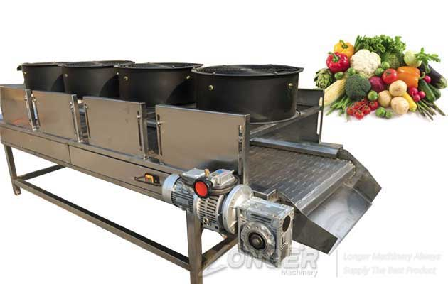 <b>Fruit Vegetable Air Drying Machine|Cooling Machine</b>