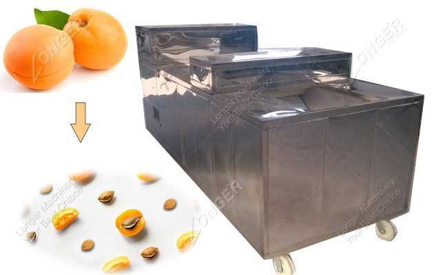 Good Quality Apricot Pitting Machine For Sale