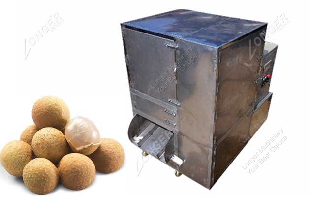 Stainless Steel Automatic Fresh Longan Pitting Machine