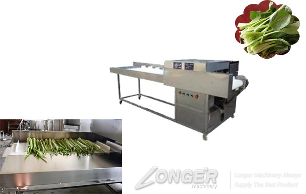 vegetable root cutting machine upplier