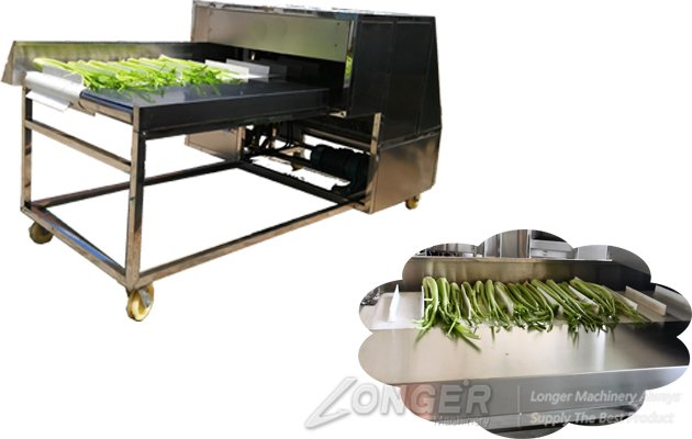 vegetable root cutting machine detail