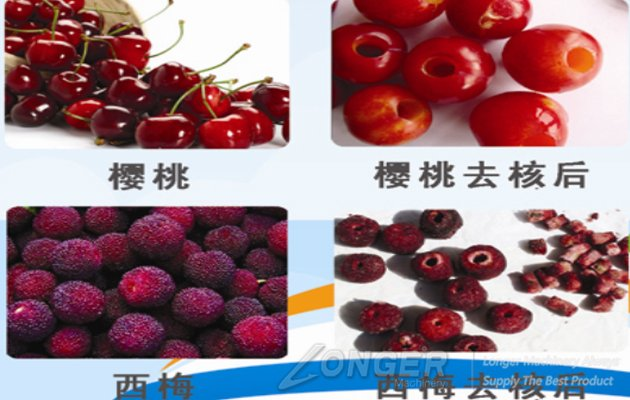 automatic cherry pitting machine