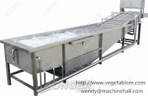 commercial fruit and vegetable washer with best price made in china
