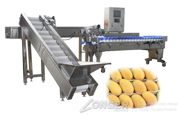 automatic fruit weight sorting machine