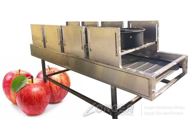 fruit vegetable air drying machine price