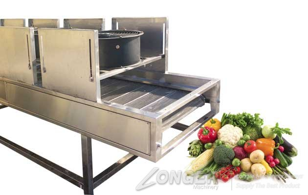 fruit vegetable air drying machine quotation china manufacturer
