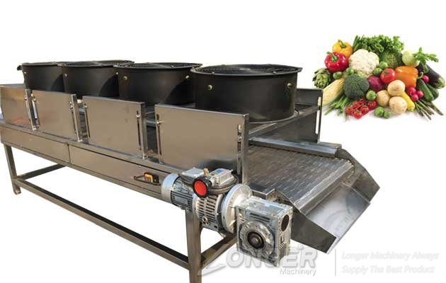 fruit vegetable air drying machine|cooling machine