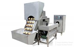 High efficient onion peeling and root cutting line