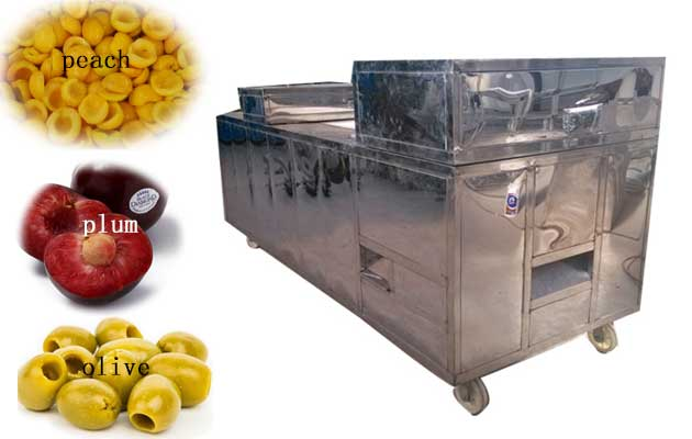 automatic olive pitting machine