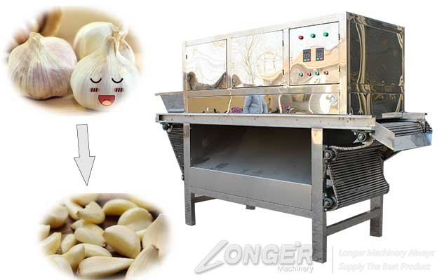 garlic peeling machine for sale