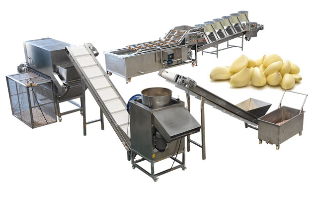 <b>High Efficiency Automatic Garlic Separating and Peeling Line</b>