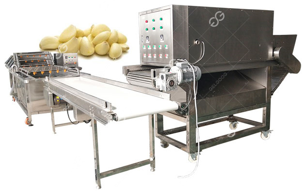 garlic peeling and separating production line