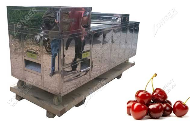cherry core remover machine for sale