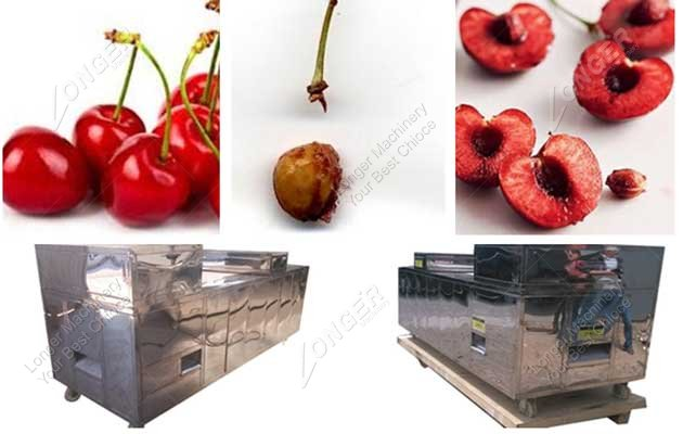 hot sale cherry pitting machine