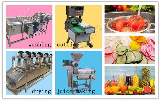 image for fruit processing machines