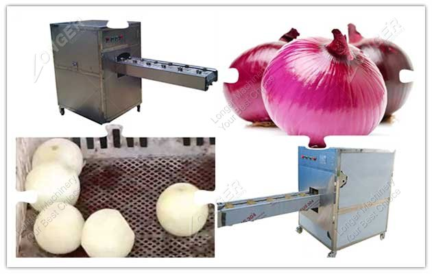 image for onion root cutting machine