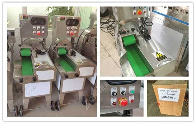 leaf vegetable cutting machine in factory